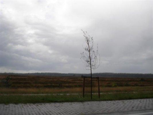 gelderland025