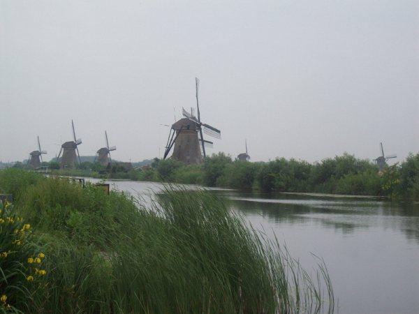 Snelrewaard189