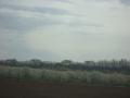 fruitbomen staan nog vol in de bloesem
